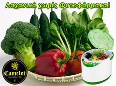 Save money and stay healthy with the fantastic Imperial Tech Food Washer Machine. This amazing new product removes pesticides, chemicals and bacteria from fresh fruit and vegetables using ordinary tap water. How To Stay Healthy, Healthy Life, Washer Machine, Fresh Fruits And Vegetables, Saving Money, Herbs, Tech, Cleaning, Amazing