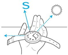 Hold a watch with 12 o'clock at left. Move your arm so the hour hand points at the sun. The spot halfway between the hour hand and the 12 is south.