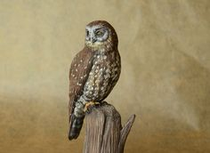 New Zealand Morepork - made by Harriet Knibbs Sculptures Ltd