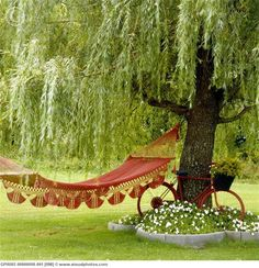 I WANT A WILLOW TREE.  AND A HAMMOCK.  AND A GOOD BOOK.  AND A COLD GLASS OF SWEET TEA.