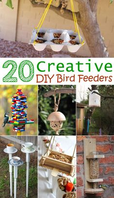 Make a simple bird feeder from items found around your house.