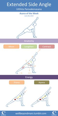 Asana of the Week: Side Angle Pose Short form. Go here if you want a more in depth version.