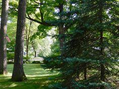 Dreaming of Summer #HenryDavidThoreau #transitions #life #retired #Northwestern #Wisconsin #pics #photography #landscape #Nikon #S6000