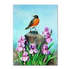 Trademark Fine Art 'Robin' Canvas Art by Arie Reinhardt Taylor, Multicolor