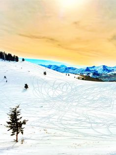 When I was a kid, my parents loved to ski. They had been skiing long before I came along, and once I did my dad taught me how to ski at a young age. Deer Valley Resort, Ski Vacation, World Traveler, Park City, West Virginia, Utah, Scenery, Hiking, Paisajes