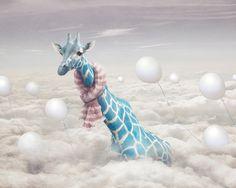 Dreaming of giraffes