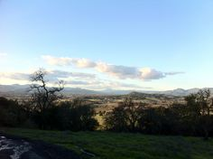 Napa Valley, on a beautiful winter day. From Skyline.