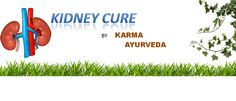 #Kidney #failure #treatment in #ayurveda  Karma Ayurveda is actively engaged in…
