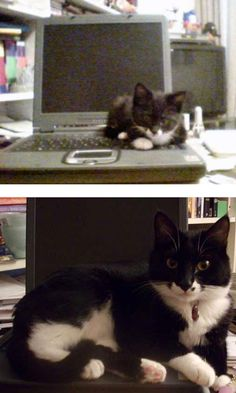 Then And Now, At The Computer
