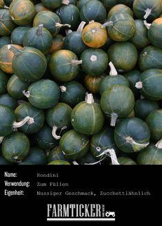 Lecker zum Füllen und Backen, netter kleiner Zierkürbis.   Weitere Infos zu allen möglichen Kürbissorten findest du im Link! Eggplant, Avocado, Fruit, Vegetables, Link, Food, Carving Pumpkins, Popular, Autumn