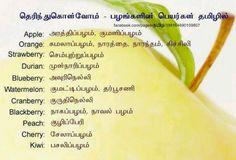 fruit name in tamil
