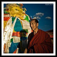 Lhasa by ~M3tzger on deviantART