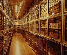 Gérard Père et Fils: Private Bank of Cigars, Vintage Cigars - Episode 5/6 - Ping Dubai
