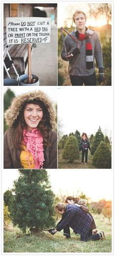 christmas tree engagement photo session