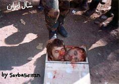 Shitari another word for albanians .kill serb civilians.