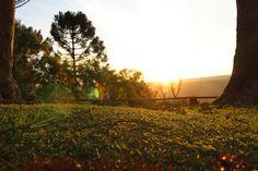 Sunset Itapara