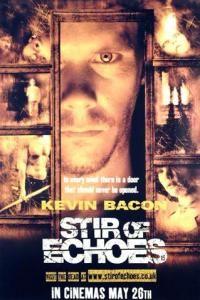 696 Stir of Echoes (1999)
