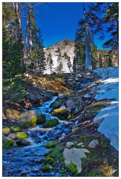 next to camp site on the tahoe rim trail. lake tahoe backcountry.