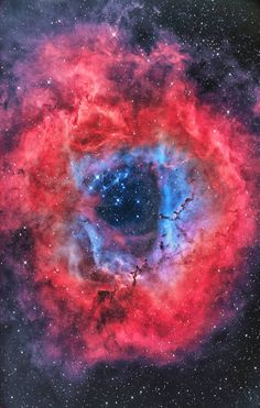 Rosette Nebula- A survey of the nebula with the Chandra X-ray Observatory has revealed the presence of numerous new-born stars inside optical Rosette Nebula and studded within a dense molecular cloud.