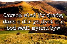 15 of the most beautiful lines ever written in the Welsh language - Wales Online Welsh Sayings, Welsh Words, Beautiful Lines, Most Beautiful, Welsh Tattoo, Celtic Tattoos For Men, Learn Welsh, Welsh Language, Tatoo