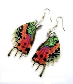 Real Butterfly Wing Earrings by Butterflysenses - I can't tell if I'm okay with this idea...
