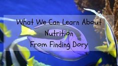 What We Can Learn About Nutrition From Finding Dory. Read the blog post at http://wp.me/p6LHEX-HC  I had the pleasure of watching Finding Dory with my boys. We loved the movie! During the movie I could not help but relate the story to my experiences helping people to increase their motivation and overcome their confidence and mindset issues associated with food and their body.  I've broken down my favourite quotes from the movie into 5 sections. Each section corresponds to a stage of change…