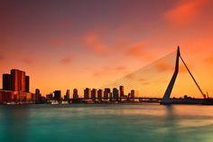 Erasmus brug, Rotterdam