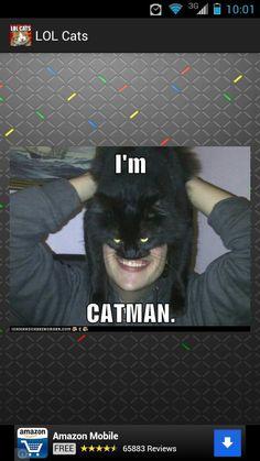 Lol #lolcats #cats #funny