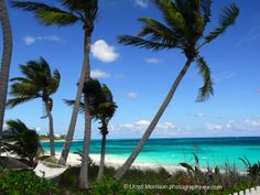 Bahamas places-to-see