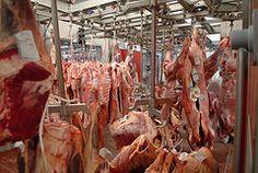 Viandes et produits carnés à Rungis