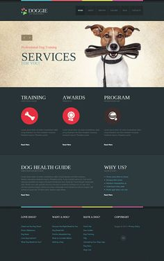 Pet Services Joomla Template