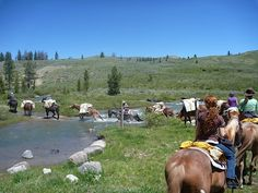 Jake's Horses (Big Sky) offers winter & summer trial rides, dinner rides, and sleigh & hay rides.