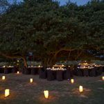 Fig Tree Venue