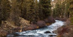 Deschutes River near Bend OR [OC][5616x2878] cschelz http://ift.tt/2zWInZx November 19 2017 at 09:01AMon reddit.com/r/ EarthPorn