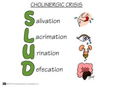 Cholinergic Crisis Cholinergic crisis is the over-stimulation at the neuromuscular junction to an excess of acetylcholine. Mnemonic below may also be known as SLUDGE with G as Gastrointestinal update and Emesis.