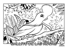 1000+ images about Dibujos para colorear Coloring pages on ...