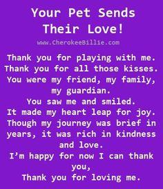 My pleasure and pure joy!