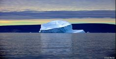 айсберги на фотографиях Галины Морелл