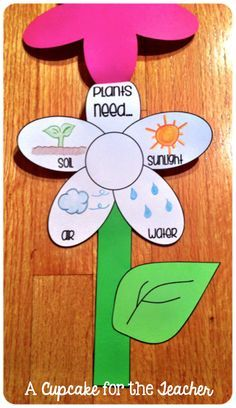 growing plants craft - Google Search