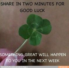 Good luck<<I like how there's no threat, just share it for good luck and that's it. Don't worry pal<<I don't usually do this, but. I need luck. Hope this works Just Do It, Just In Case, Chain Messages, Funny Quotes, Funny Memes, Puns Jokes, True Quotes, Funny Shit, Qoutes