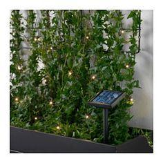 SOLARVET LED lighting chain with 24 lights, outdoor, solar-powered