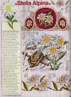 Gallery.ru / Фото #100 - Ботаника - TATO4KA6