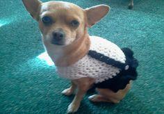 Simple Suspender Dog Dress FREE Crochet Pattern