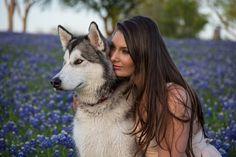 10 poze care te vor convinge sa iti doresti un animal de companie Siberian Husky Puppies, Husky Puppy, Husky Drawing, Therapy Dogs, Dog Hacks, Free Dogs, Dog Friends, Plexus Products, Dog Pictures