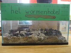 Een wormenhotel