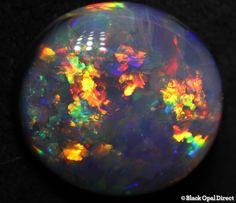 4.23 ct black opal 13x12x4mm - Black Opal Direct