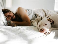 A 2011 study in the Animal Welfare journal showed that pit bulls adopted from a shelter are about 4 times more likely to sleep on their owner's bed than similar sized dogs of other breeds, were more likely to cuddle with their owners, and were much less likely to show aggression towards their owners.