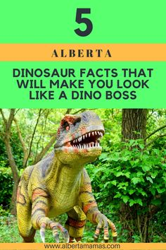 We've come up with 3 factoids about Albertan dinosaurs you can stash in your back pocket next time your little scientist thinks they know everything there is to know about the giant lizards. Dinosaur Facts For Kids, Canada Destinations, Visit Canada, Prehistoric Animals, Prehistory, You Look Like, Canada Travel, Calgary, Dinosaurs