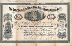 Delaware & Potomac Fish Preserving Co. 100 shares à 1 $ 21.11.1881.