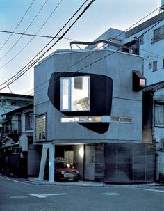 Ninja House by Peter Wilson
